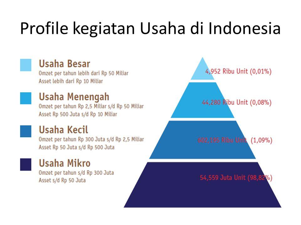 Profile kegiatan Usaha di Indonesia