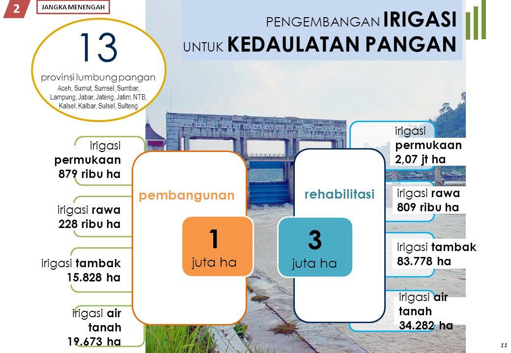 11 2 PENGEMBANGAN IRIGASI UNTUK KEDAULATAN PANGAN irigasi permukaan 2,07 jt ha irigasi rawa 809 ribu ha irigasi tambak 83.778 ha rehabilitasi 13 Aceh,