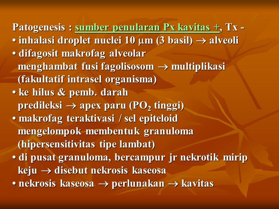 Patogenesis : sumber penularan Px kavitas +, Tx - inhalasi droplet nuclei 10  m (3 basil)  alveoli difagosit makrofag alveolar menghambat fusi fagolisosom  multiplikasi (fakultatif intrasel organisma) ke hilus & pemb.