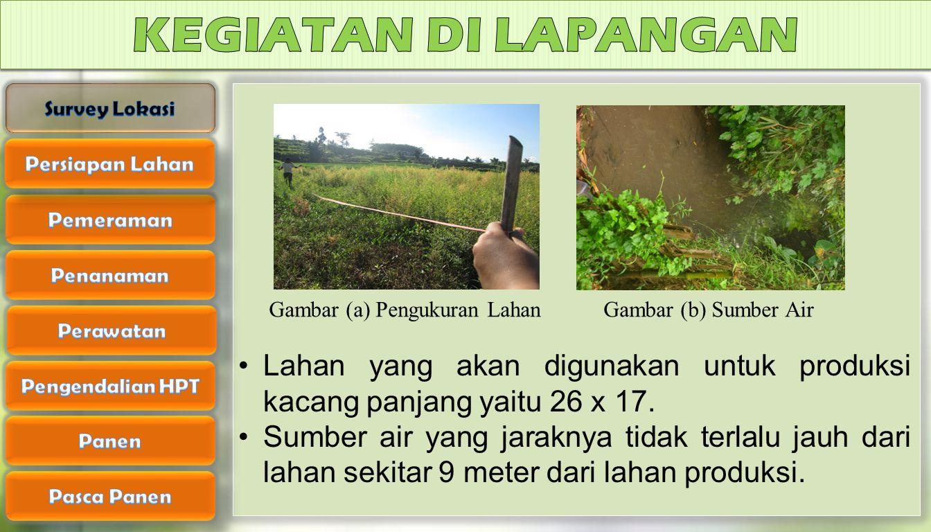 Gambar (a) Pengukuran Lahan Gambar (b) Sumber Air Lahan yang akan digunakan untuk produksi kacang panjang yaitu 26 x 17. Sumber air yang jaraknya tida