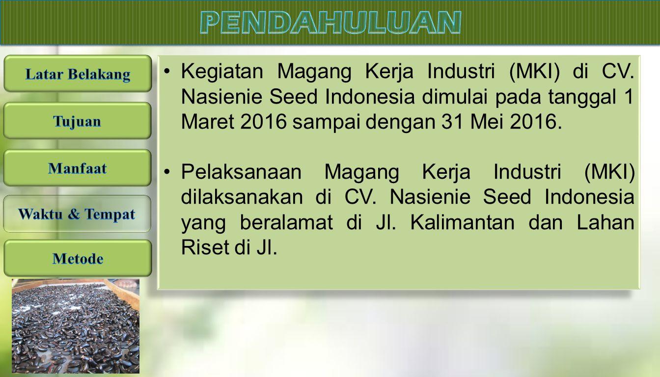 Kegiatan Magang Kerja Industri (MKI) di CV. Nasienie Seed Indonesia dimulai pada tanggal 1 Maret 2016 sampai dengan 31 Mei 2016. Pelaksanaan Magang Ke