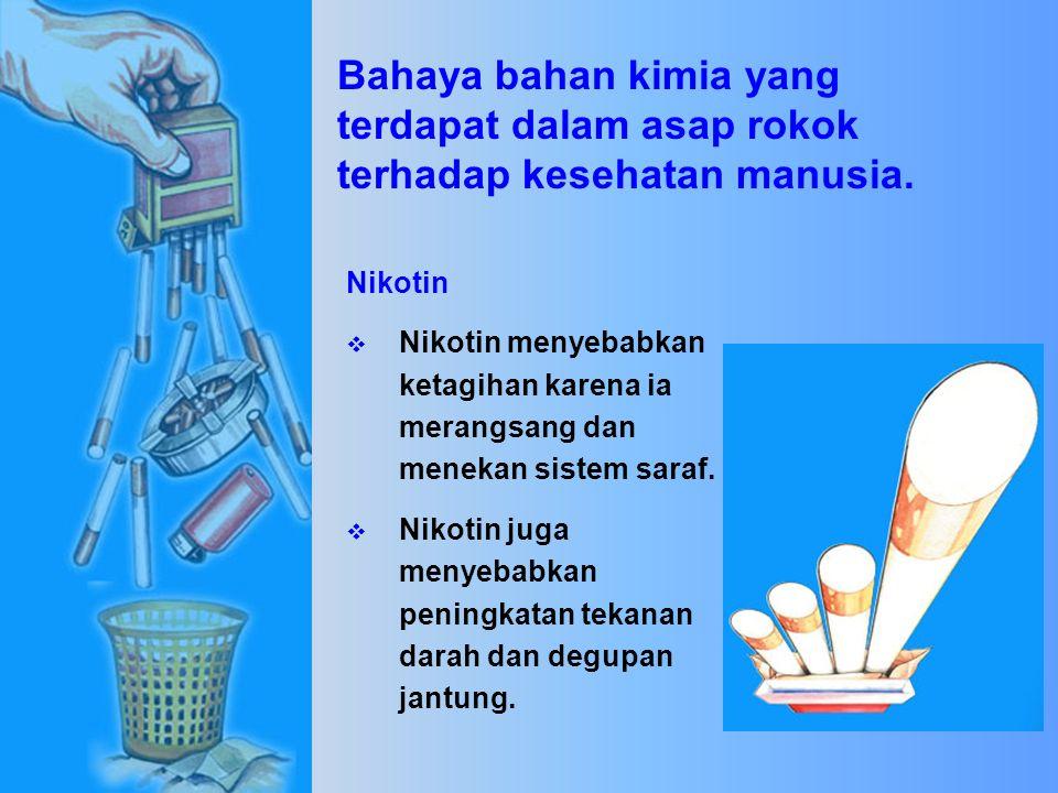  Pyrene  Dioksin (karsinogen)  Furan (karsinogen)  Plumbum (merencatkan otak)