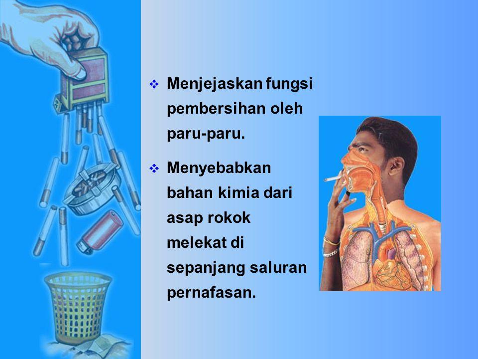 Karbon Monoksida  Mengurangkan oksigen di dalam darah yang mengalir ke seluruh bahagian badan.