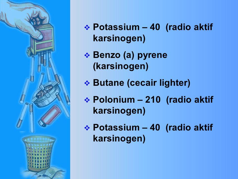  Dibenzarcridine (karsinogen)  Hydrogen Cyanide (gas beracun yang digunakan untuk membunuh penjenayah)  Benzo (a) pyrene (karsinogen)Butane (cecair lighter)  Polonium – 210 (radio aktif karsinogen)