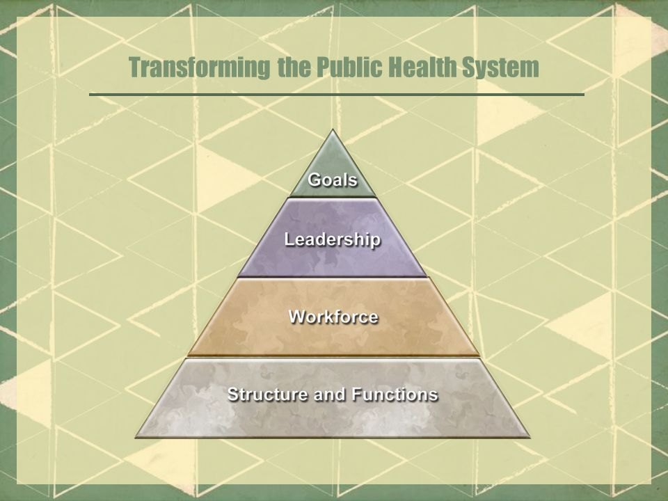 Transforming the Public Health System