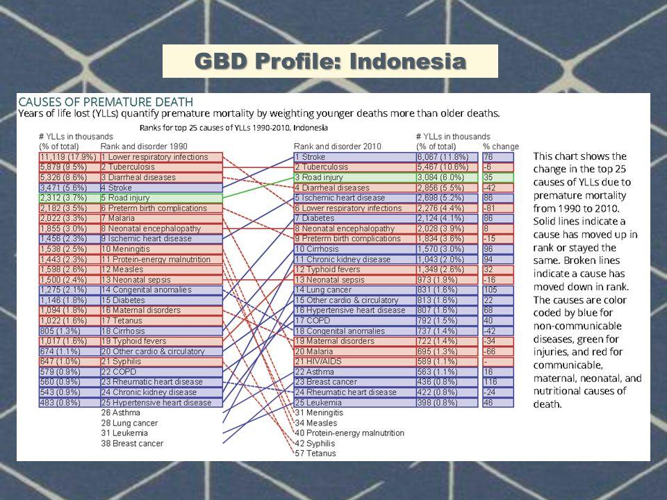 GBD Profile: Indonesia
