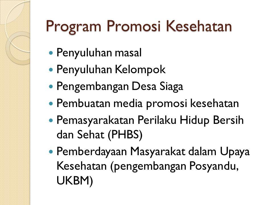 Program Promosi Kesehatan Penyuluhan masal Penyuluhan Kelompok Pengembangan Desa Siaga Pembuatan media promosi kesehatan Pemasyarakatan Perilaku Hidup Bersih dan Sehat (PHBS) Pemberdayaan Masyarakat dalam Upaya Kesehatan (pengembangan Posyandu, UKBM)