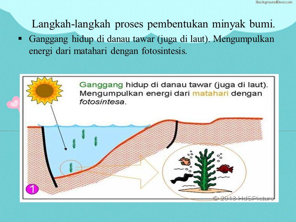 Proses Pembentukan Minyak Bumi  Minyak bumi terbentuk dari penguraian senyawa-senyawa organik dari jasad mikroorganisme jutaan tahun yang lalu di dasar laut atau di darat.