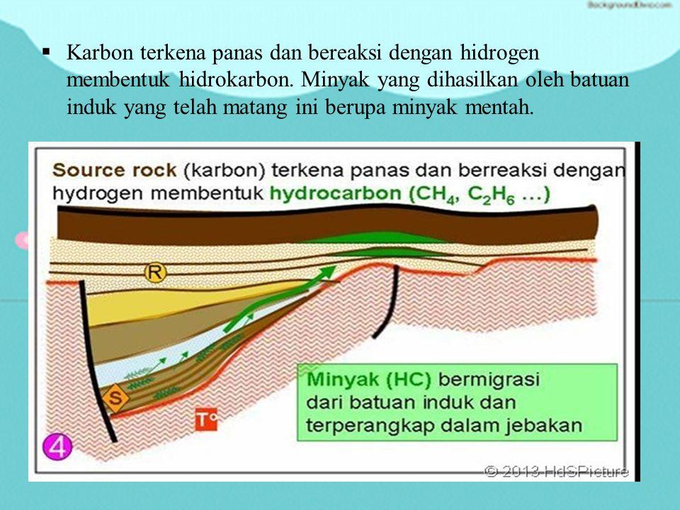  Batuan induk akan terkubur di bawah batuan-batuan lainnya yang berlangsung selama jutaan tahun.