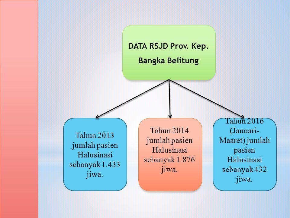 DATA RSJD Prov. Kep. Bangka Belitung Tahun 2013 jumlah pasien Halusinasi sebanyak 1.433 jiwa.