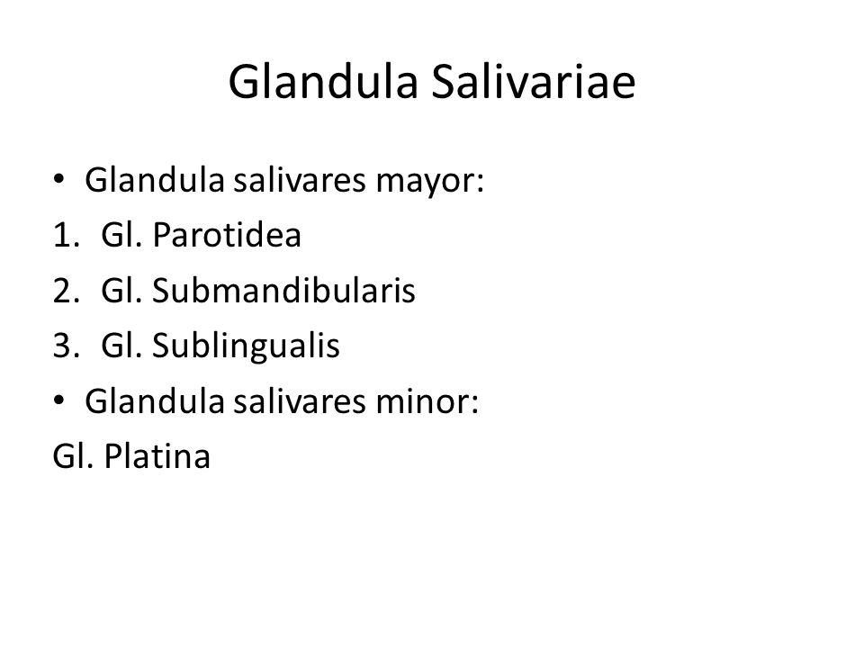 Glandula Salivariae Glandula salivares mayor: 1.Gl. Parotidea 2.Gl. Submandibularis 3.Gl. Sublingualis Glandula salivares minor: Gl. Platina