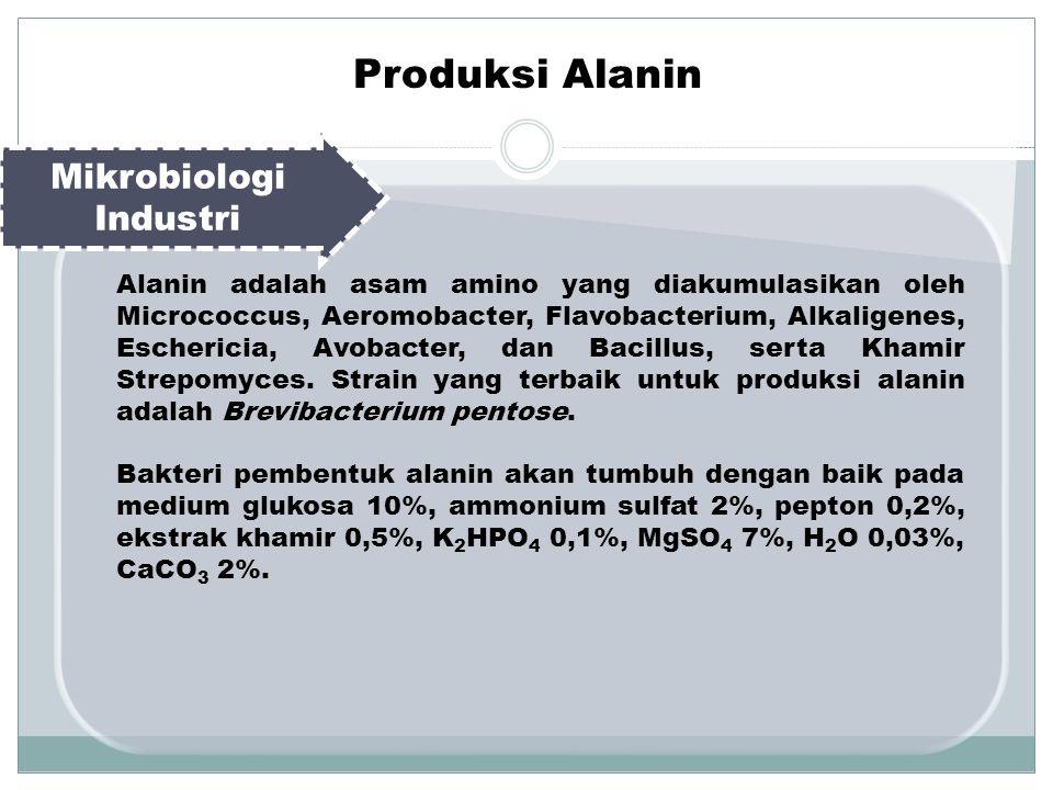 Mikrobiologi Industri Alanin adalah asam amino yang diakumulasikan oleh Micrococcus, Aeromobacter, Flavobacterium, Alkaligenes, Eschericia, Avobacter, dan Bacillus, serta Khamir Strepomyces.