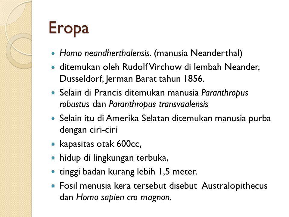 Eropa Homo neandherthalensis.