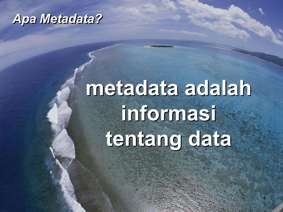 • memfasilitasi pemahaman • Berfokus pada elemen kunci • Memungkinkan penemuan - di dalam dan di luar organisasi • memfasilitasi pemahaman • Berfokus pada elemen kunci • Memungkinkan penemuan - di dalam dan di luar organisasi Untuk data pengguna, metadata...
