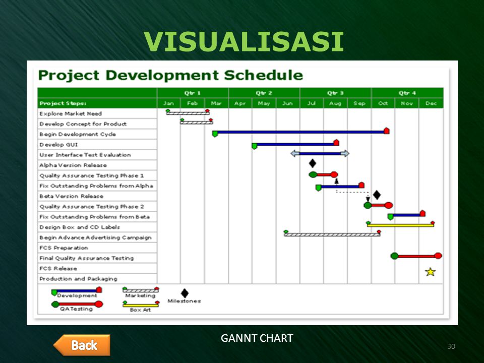 VISUALISASI GANNT CHART 30