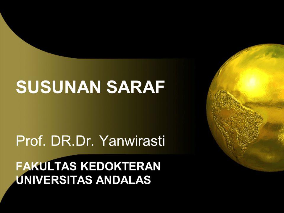 SUSUNAN SARAF Prof. DR.Dr. Yanwirasti FAKULTAS KEDOKTERAN UNIVERSITAS ANDALAS