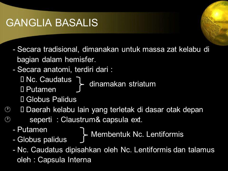 GANGLIA BASALIS - Secara tradisional, dimanakan untuk massa zat kelabu di bagian dalam hemisfer. - Secara anatomi, terdiri dari :  Nc. Caudatus  P