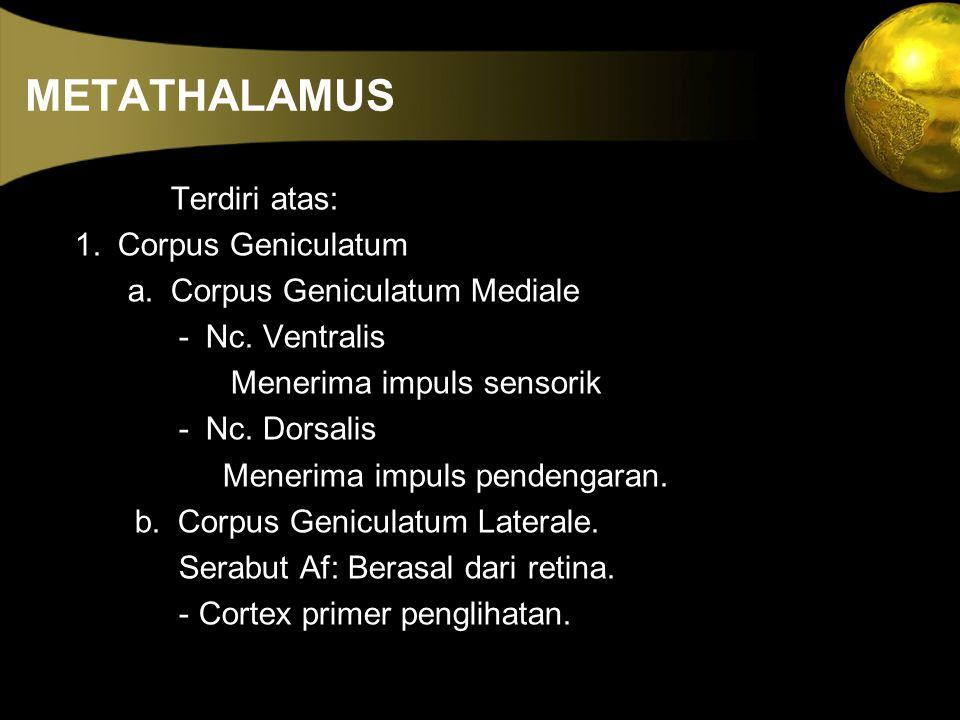 METATHALAMUS Terdiri atas: 1. Corpus Geniculatum a. Corpus Geniculatum Mediale - Nc. Ventralis Menerima impuls sensorik - Nc. Dorsalis Menerima impuls