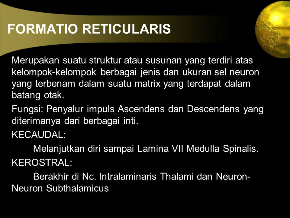 FORMATIO RETICULARIS Merupakan suatu struktur atau susunan yang terdiri atas kelompok-kelompok berbagai jenis dan ukuran sel neuron yang terbenam dala