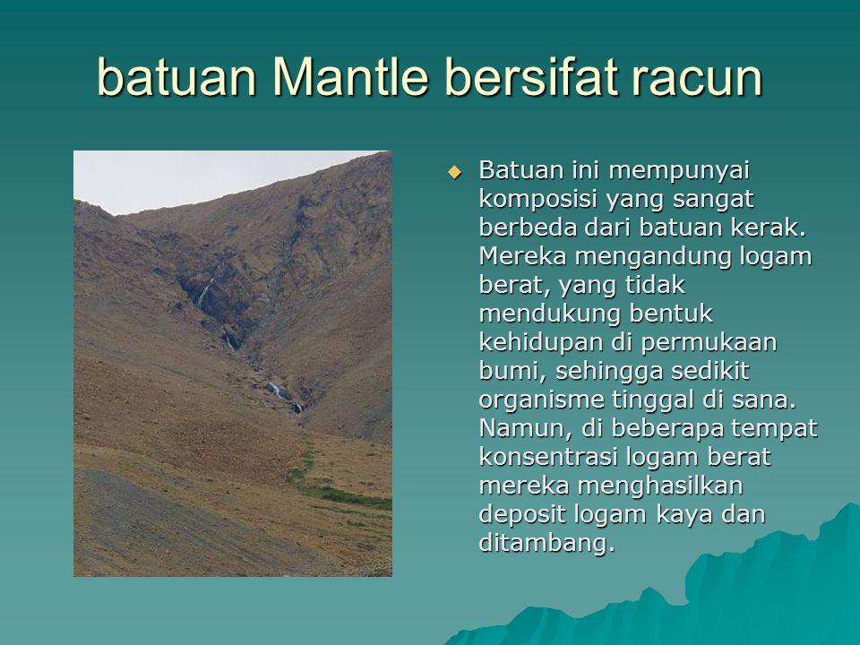 batuan Mantle bersifat racun  Batuan ini mempunyai komposisi yang sangat berbeda dari batuan kerak. Mereka mengandung logam berat, yang tidak menduku