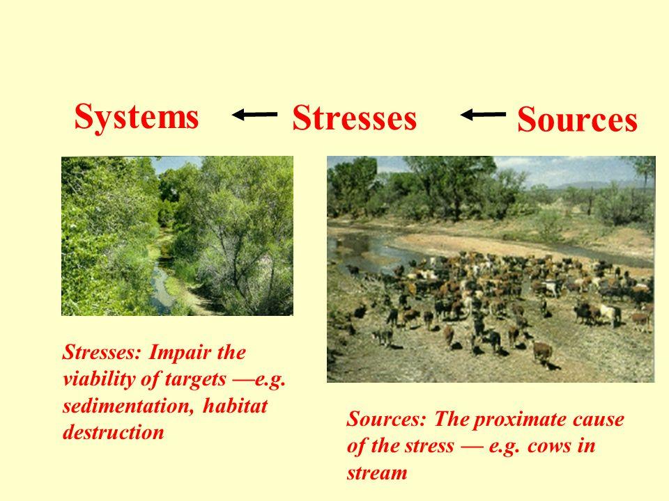 Systems Stresses Sources Stresses: Impair the viability of targets —e.g. sedimentation, habitat destruction Sources: The proximate cause of the stress