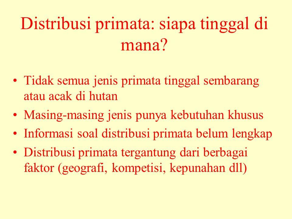 Distribusi primata: siapa tinggal di mana? •Tidak semua jenis primata tinggal sembarang atau acak di hutan •Masing-masing jenis punya kebutuhan khusus