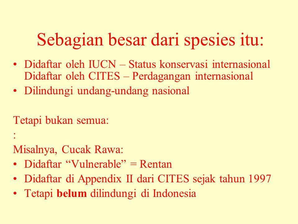 Sebagian besar dari spesies itu: •Didaftar oleh IUCN – Status konservasi internasional Didaftar oleh CITES – Perdagangan internasional •Dilindungi undang-undang nasional Tetapi bukan semua: : Misalnya, Cucak Rawa: •Didaftar Vulnerable = Rentan •Didaftar di Appendix II dari CITES sejak tahun 1997 •Tetapi belum dilindungi di Indonesia
