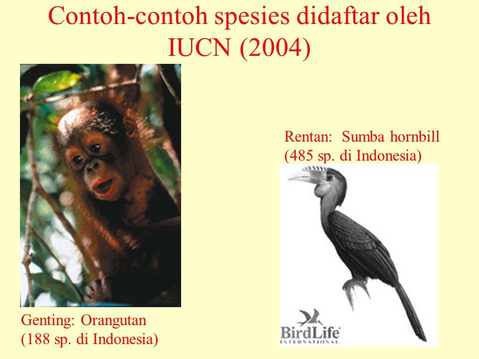 Contoh-contoh spesies didaftar oleh IUCN (2004) Genting: Orangutan (188 sp. di Indonesia) Rentan: Sumba hornbill (485 sp. di Indonesia)