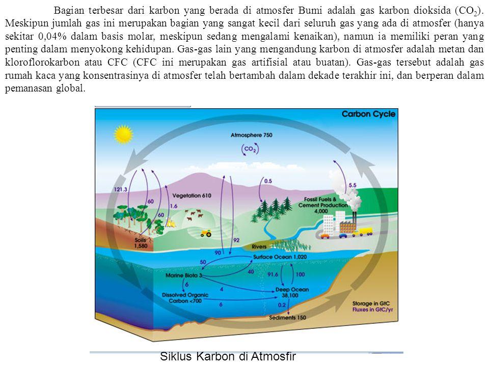 2. Karbon di Atmosfer Karbon diambil dari atmosfer dengan berbagai cara: 1.Ketika matahari bersinar, tumbuhan melakukan fotosintesa untuk mengubah kar