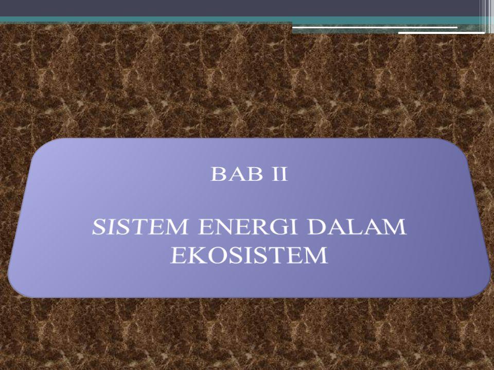 C. Manfaat Penulisan 1.Dapat memahami sistem energi dalam ekosistem 2.Dapat memahami siklus biogeokimia dalam kehidupan 3.Dapat memahami hubungan alir