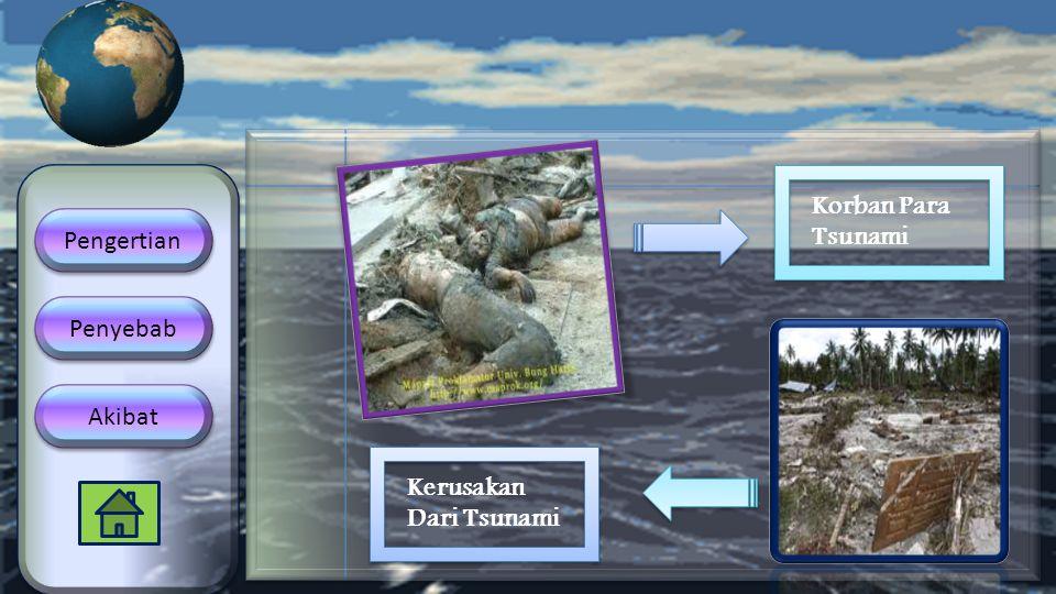 Pengertian Penyebab Akibat Korban Para Tsunami Kerusakan Dari Tsunami