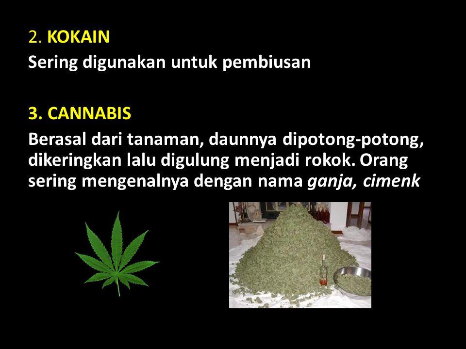 2. KOKAIN Sering digunakan untuk pembiusan 3. CANNABIS Berasal dari tanaman, daunnya dipotong-potong, dikeringkan lalu digulung menjadi rokok. Orang s