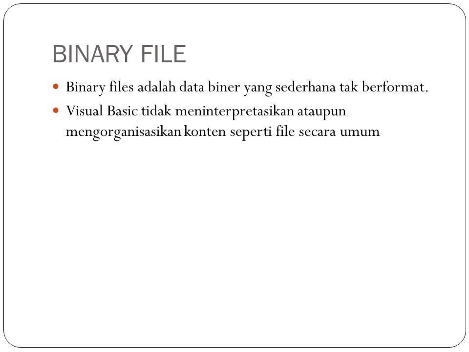 BINARY FILE  Binary files adalah data biner yang sederhana tak berformat.  Visual Basic tidak meninterpretasikan ataupun mengorganisasikan konten se