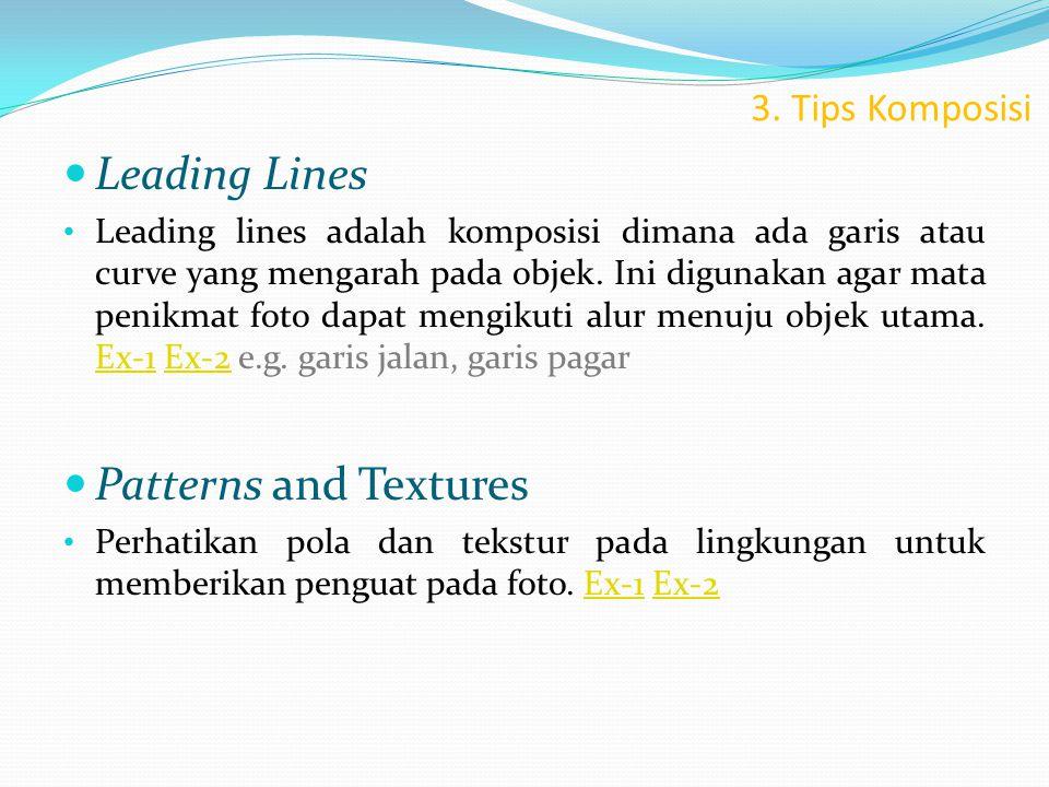 3. Tips Komposisi  Leading Lines • Leading lines adalah komposisi dimana ada garis atau curve yang mengarah pada objek. Ini digunakan agar mata penik