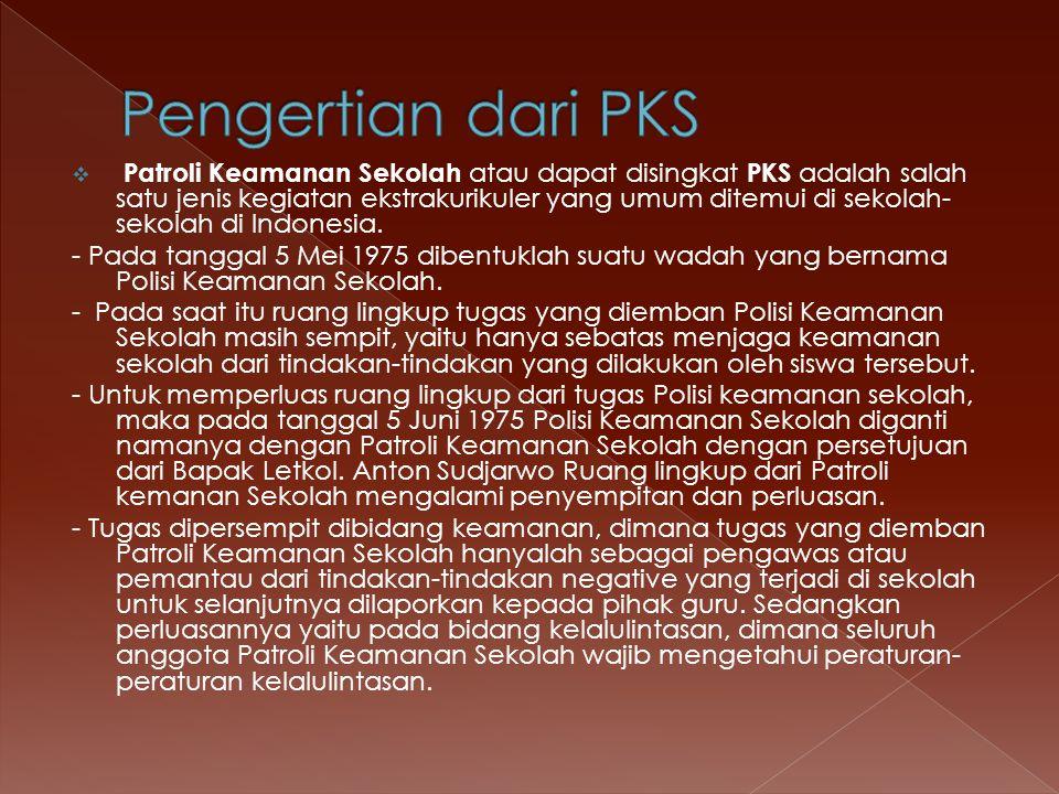  Patroli Keamanan Sekolah atau dapat disingkat PKS adalah salah satu jenis kegiatan ekstrakurikuler yang umum ditemui di sekolah- sekolah di Indonesi