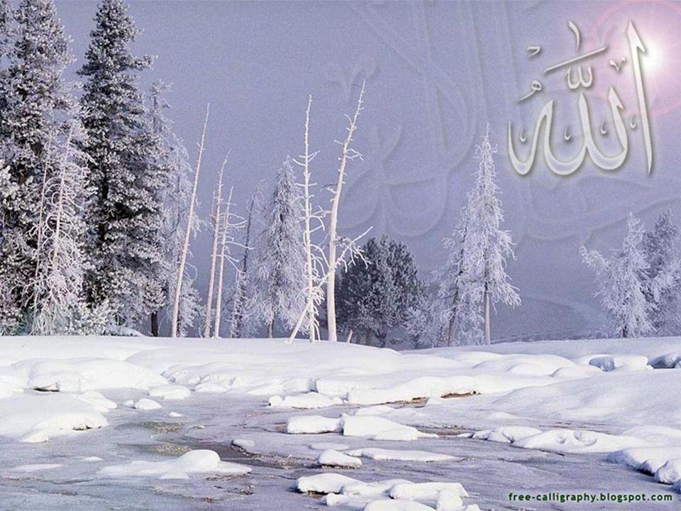 10 Allah -Subhanahu wa Ta'ala- berfirman, مَنْ كَانَ يُرِيدُ الْعِزَّةَ فَلِلَّهِ الْعِزَّةُ جَمِيعًا إِلَيْهِ يَصْعَدُ الْكَلِمُ الطَّيِّبُ وَالْعَمَلُ الصَّالِحُ يَرْفَعُهُ Barangsiapa yang menghendaki kemuliaan, maka bagi Allah-lah kemuliaan itu semuanya.