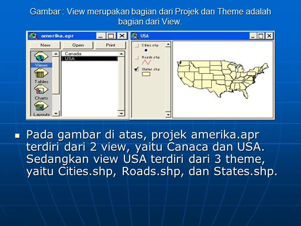 Gambar : View merupakan bagian dari Projek dan Theme adalah bagian dari View.