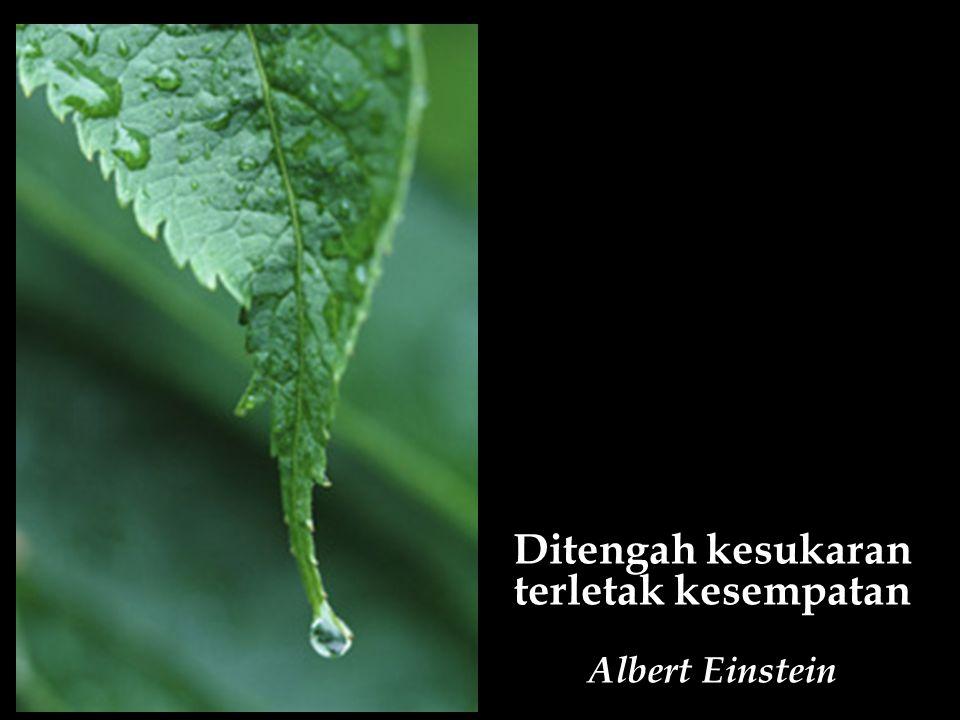 Ditengah kesukaran terletak kesempatan Albert Einstein
