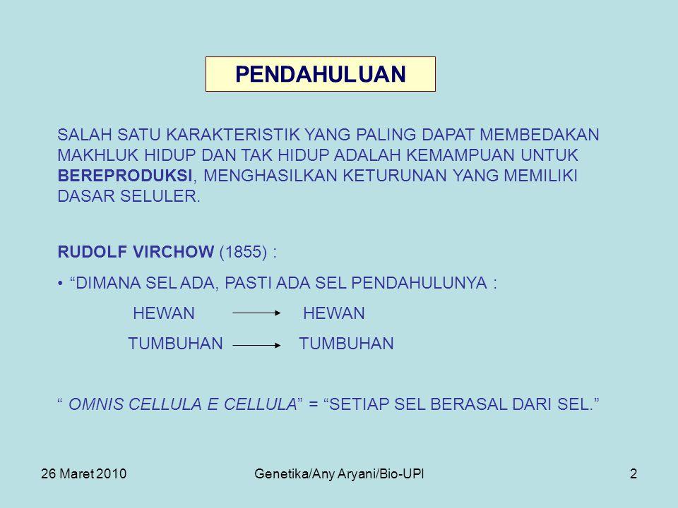 26 Maret 2010Genetika/Any Aryani/Bio-UPI13 KROMATID BERJEJER TERATUR DI BIDANG PEMBELAHAN (EQUATOR).