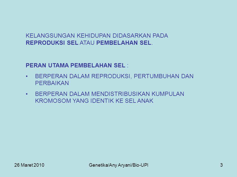 26 Maret 2010Genetika/Any Aryani/Bio-UPI4 SELURUH URUTAN KEJADIAN MULAI DARI MEMBELAHNYA NUKLEUS SAMPAI MEMBELAHNYA NUKLEUS BERIKUTNYA DINAMAKAN SIKLUS SEL.