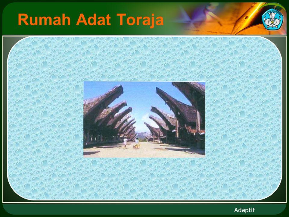 Adaptif  Rumah Adat Toraja  Rumah Adat Papua  Dll