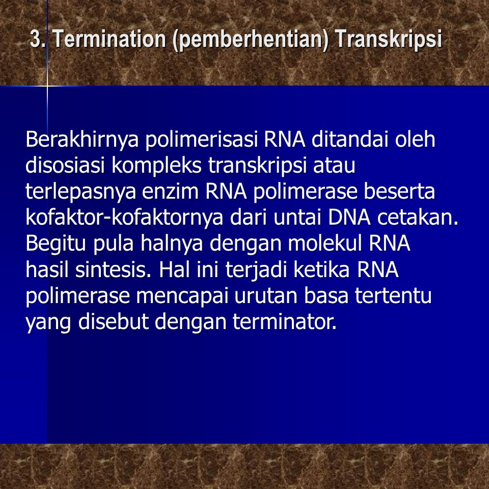Berakhirnya polimerisasi RNA ditandai oleh disosiasi kompleks transkripsi atau terlepasnya enzim RNA polimerase beserta kofaktor-kofaktornya dari untai DNA cetakan.