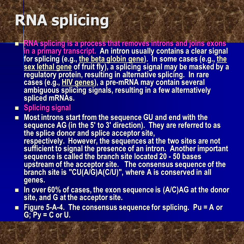 RNA splicing  RNA splicing is a process that removes introns and joins exons in a primary transcript. An intron usually contains a clear signal for s