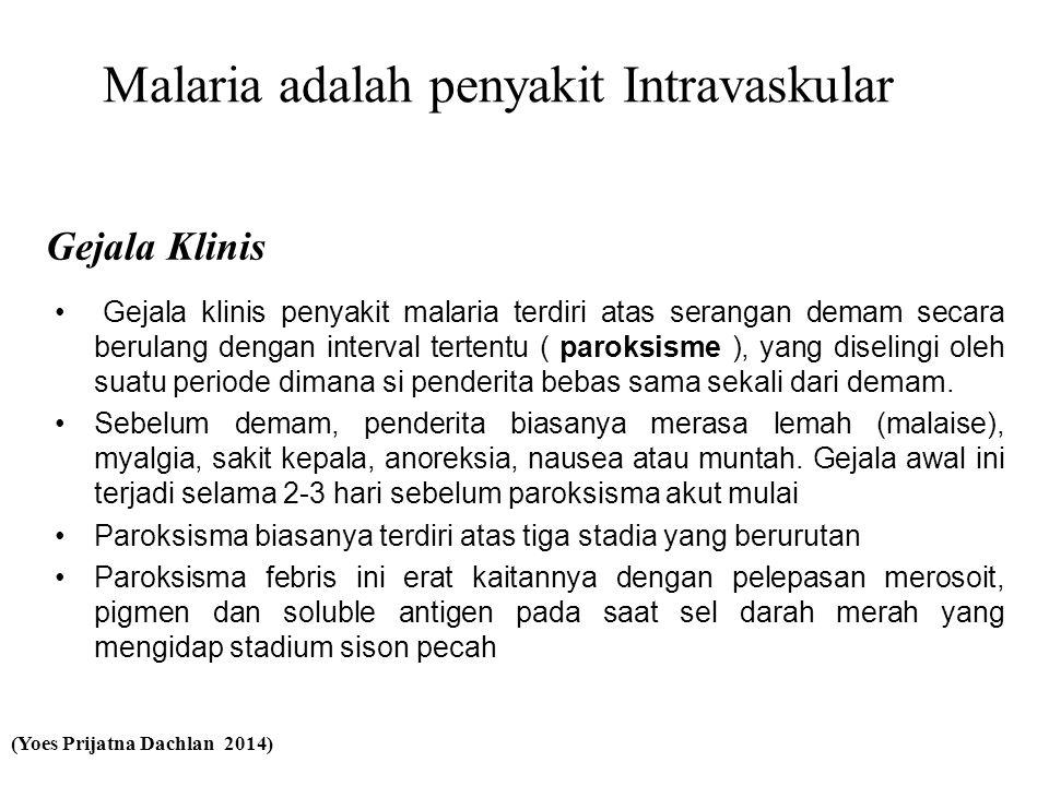Gejala Klinis • Gejala klinis penyakit malaria terdiri atas serangan demam secara berulang dengan interval tertentu ( paroksisme ), yang diselingi oleh suatu periode dimana si penderita bebas sama sekali dari demam.
