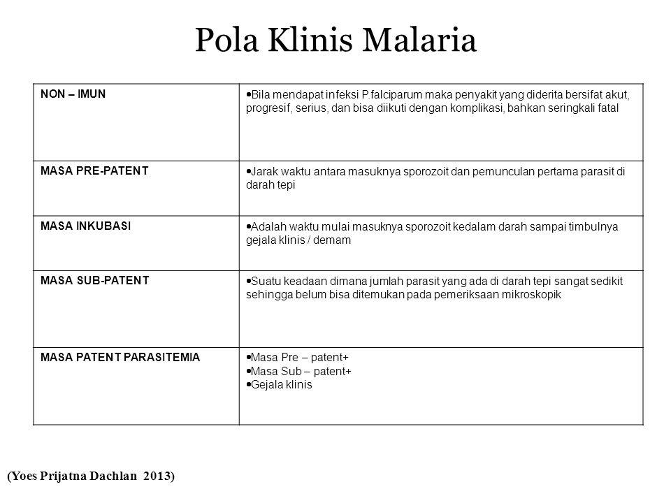 Pola Klinis Malaria NON – IMUN  Bila mendapat infeksi P.falciparum maka penyakit yang diderita bersifat akut, progresif, serius, dan bisa diikuti dengan komplikasi, bahkan seringkali fatal MASA PRE-PATENT  Jarak waktu antara masuknya sporozoit dan pemunculan pertama parasit di darah tepi MASA INKUBASI  Adalah waktu mulai masuknya sporozoit kedalam darah sampai timbulnya gejala klinis / demam MASA SUB-PATENT  Suatu keadaan dimana jumlah parasit yang ada di darah tepi sangat sedikit sehingga belum bisa ditemukan pada pemeriksaan mikroskopik MASA PATENT PARASITEMIA  Masa Pre – patent+  Masa Sub – patent+  Gejala klinis (Yoes Prijatna Dachlan 2013)