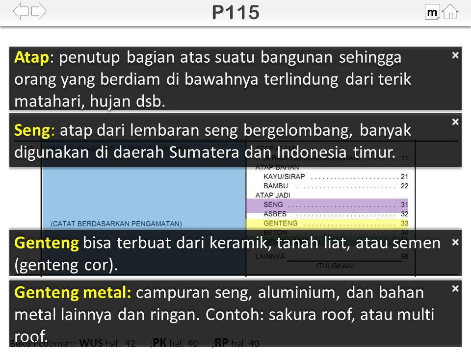 Seng: atap dari lembaran seng bergelombang, banyak digunakan di daerah Sumatera dan Indonesia timur.