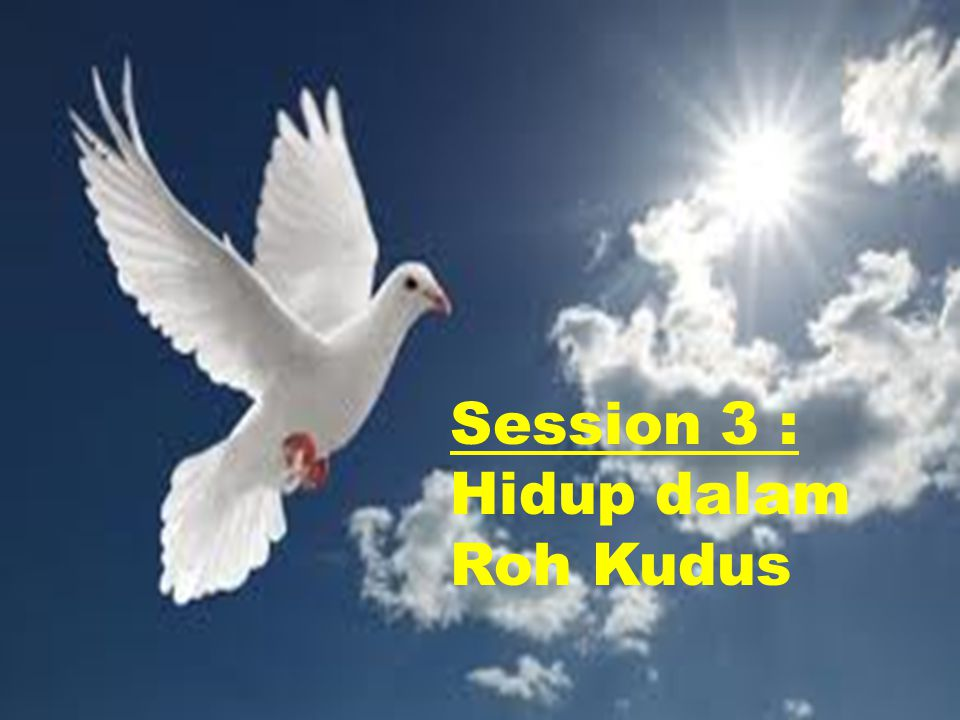 Session 3 : Hidup dalam Roh Kudus
