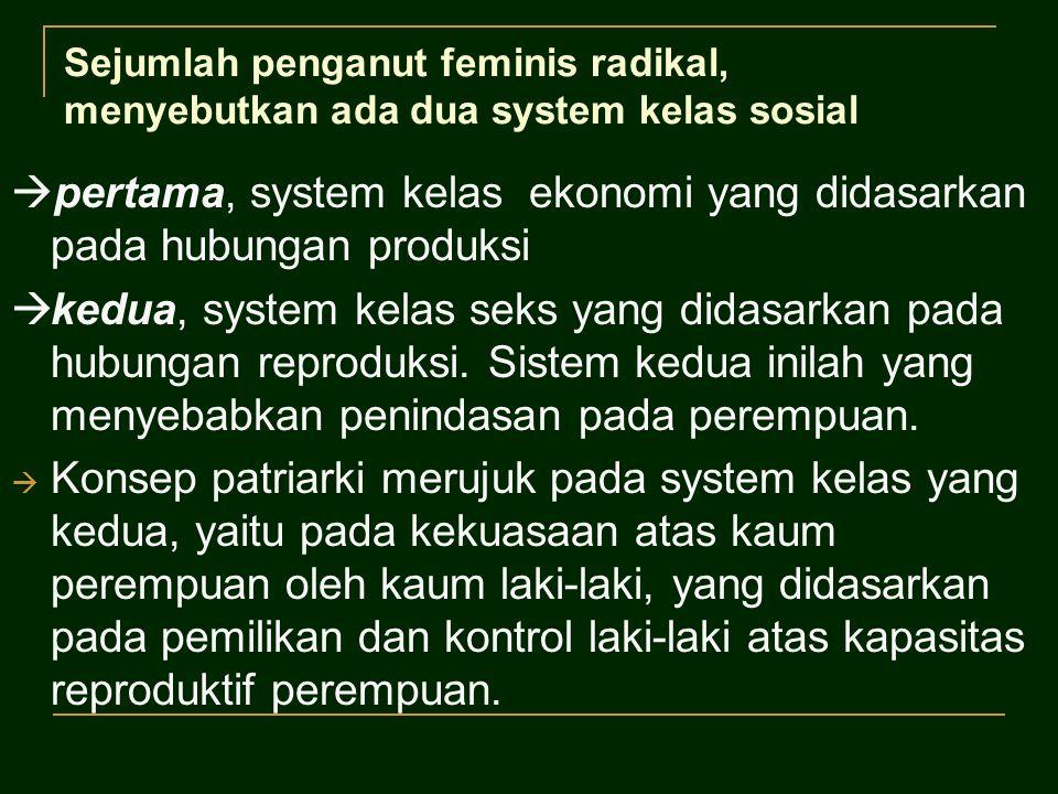 Sejumlah penganut feminis radikal, menyebutkan ada dua system kelas sosial  pertama, system kelas ekonomi yang didasarkan pada hubungan produksi  kedua, system kelas seks yang didasarkan pada hubungan reproduksi.