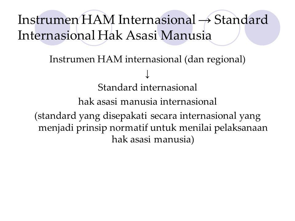Instrumen HAM Internasional → Standard Internasional Hak Asasi Manusia Instrumen HAM internasional (dan regional) ↓ Standard internasional hak asasi manusia internasional (standard yang disepakati secara internasional yang menjadi prinsip normatif untuk menilai pelaksanaan hak asasi manusia)