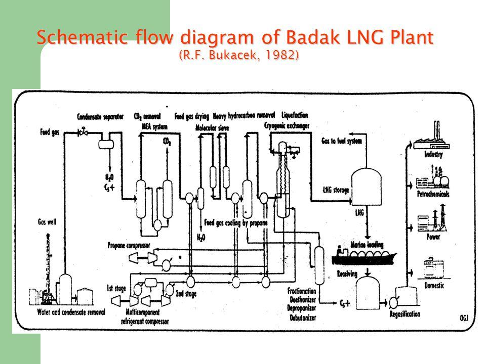Schematic flow diagram of Badak LNG Plant (R.F. Bukacek, 1982)